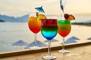 Guia Completo de Drinks 100 receitas