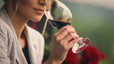 Guia Completo – Degustação de Vinhos